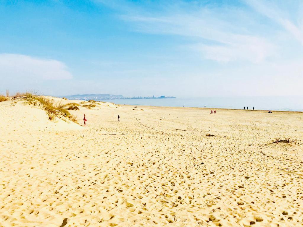 подойдут пляжи джемете анапа фото временем
