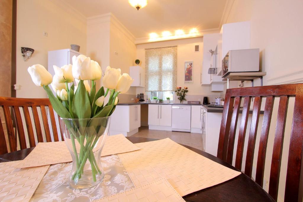 Kuchnia lub aneks kuchenny w obiekcie Apartament Secesyjny