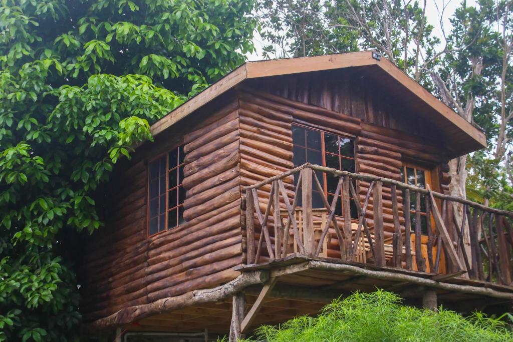 The Blue Mahoe Tree house