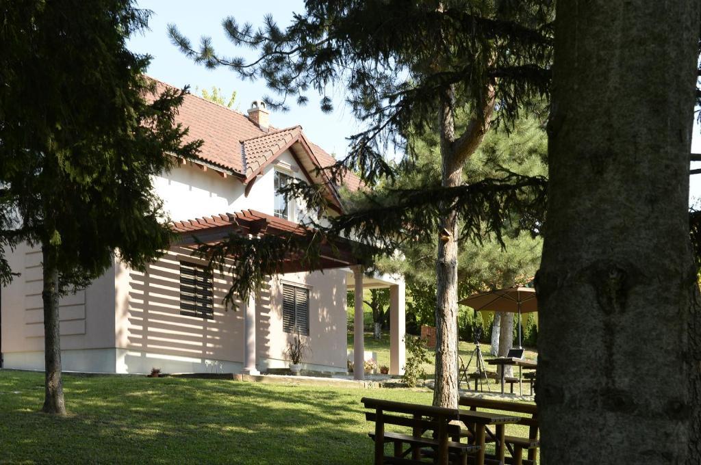Vila Davidovic-Fruska gora