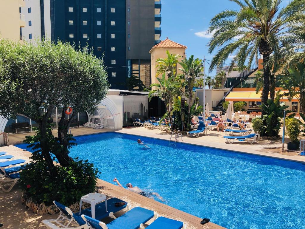 The swimming pool at or near Benidorm Plaza