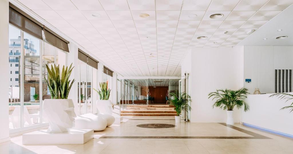 The lobby or reception area at Hotel Safari