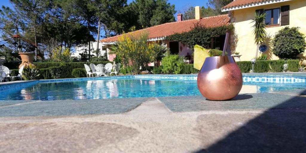 The swimming pool at or close to B&B Romangia