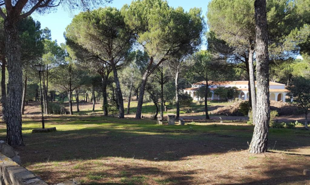 Jardín al aire libre en Camping Los Villares - Sierra de Córdoba