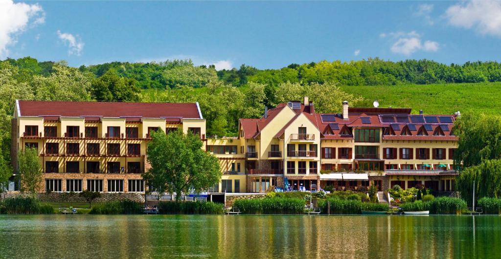 To Wellness Hotel Bank, Hungary
