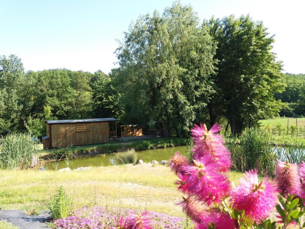 A garden outside Les roulottes de Cambonis