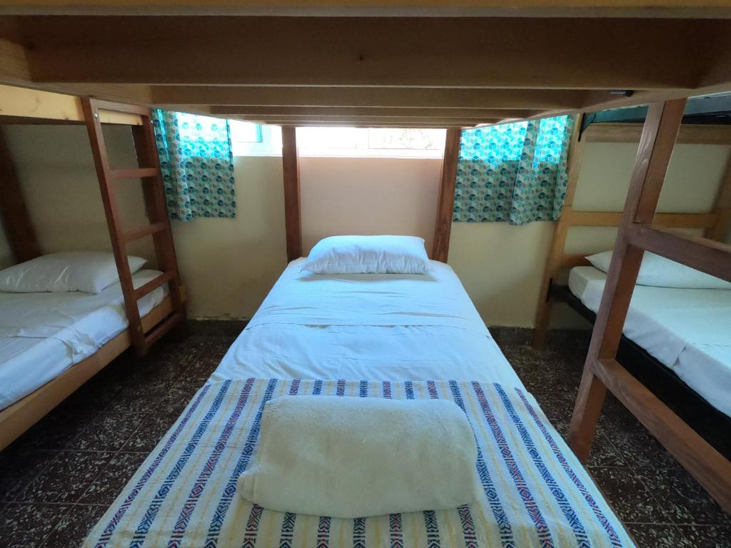 A bunk bed or bunk beds in a room at Bermejo Hostel & Backpackers