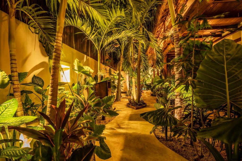 A garden outside Hotel Boutique TerraNova