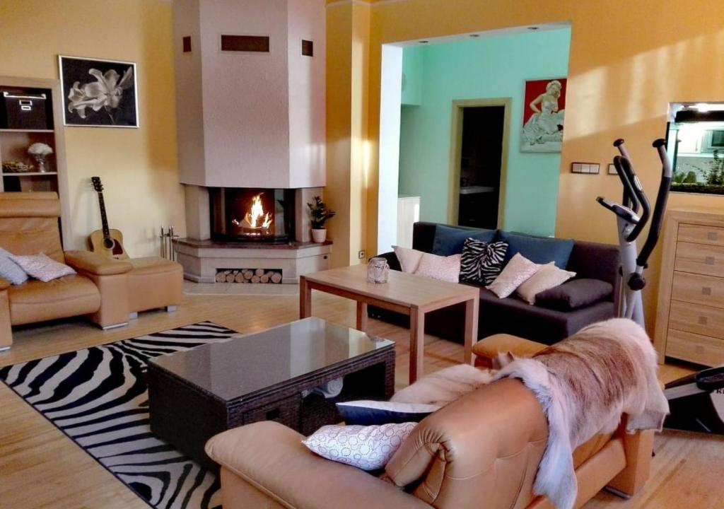 Posezení v ubytování Apartment Villa Frank