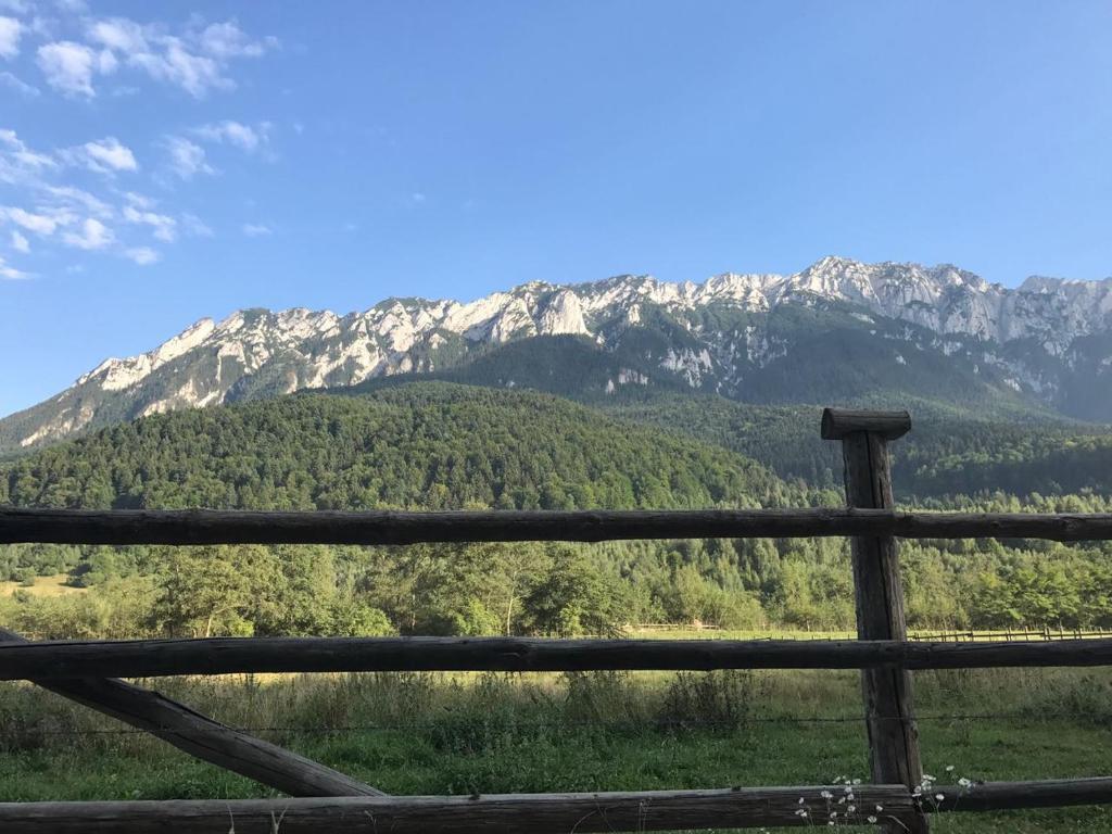 O vedere generală la munți sau o vedere la munte luată de la această pensiune
