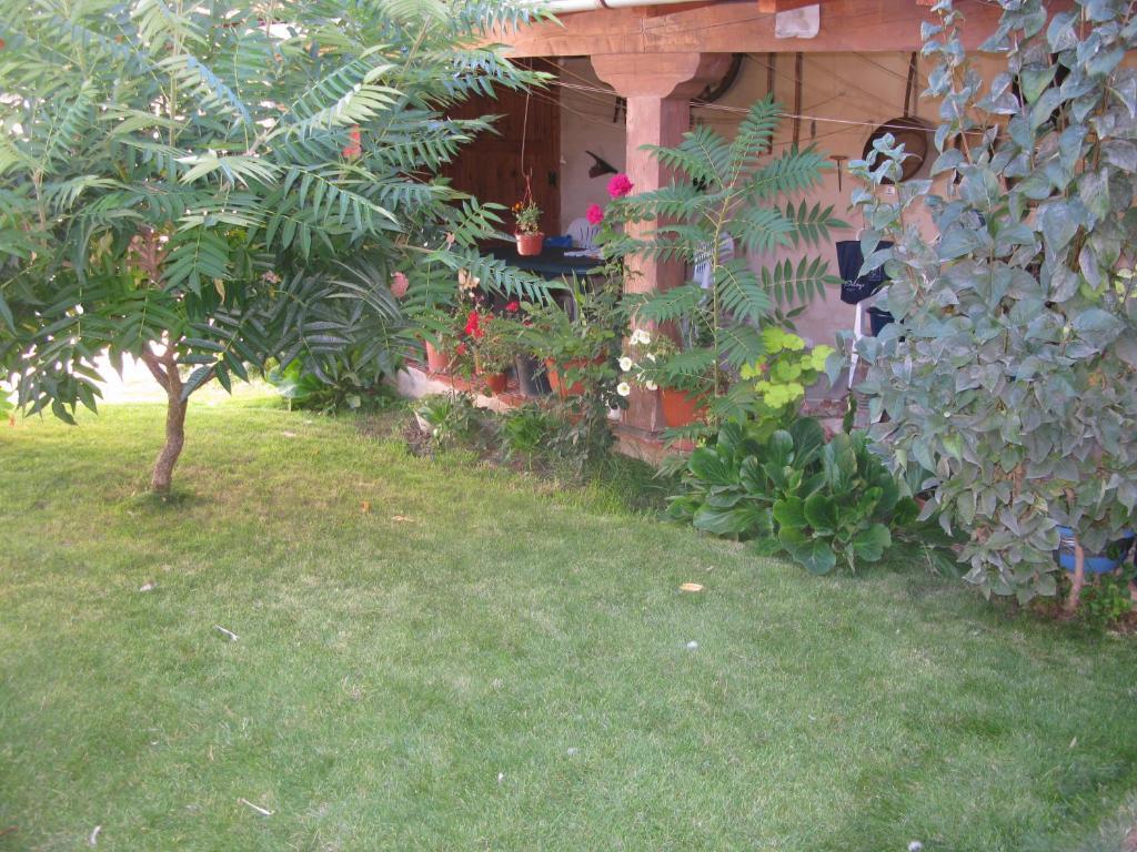 Jardín al aire libre en Casa Rural Arturo I