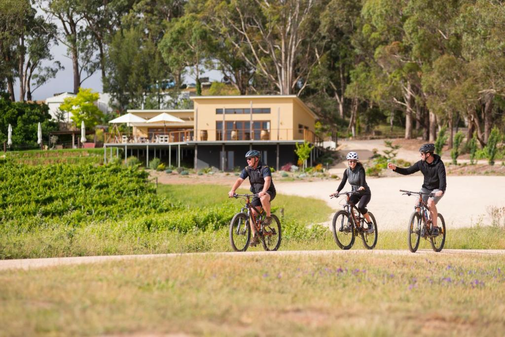 Cycling at or in the surroundings of Birdwood Motel