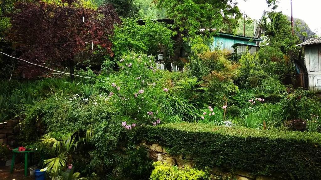 Сад в Зелёный двор
