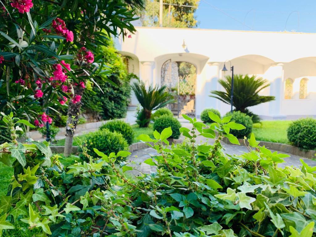Giardino di Dimora Nerano
