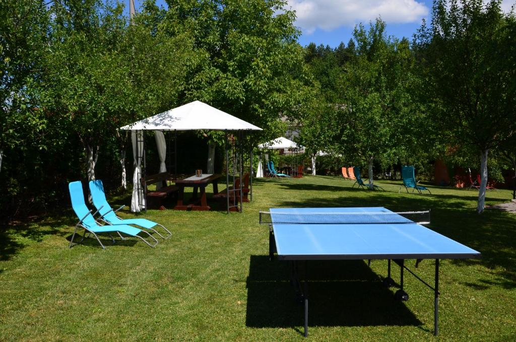 Table tennis facilities at House Hodak or nearby