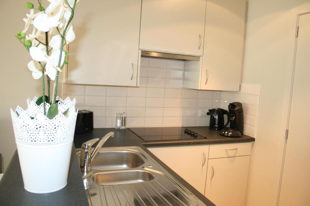 Küche/Küchenzeile in der Unterkunft Xanadu