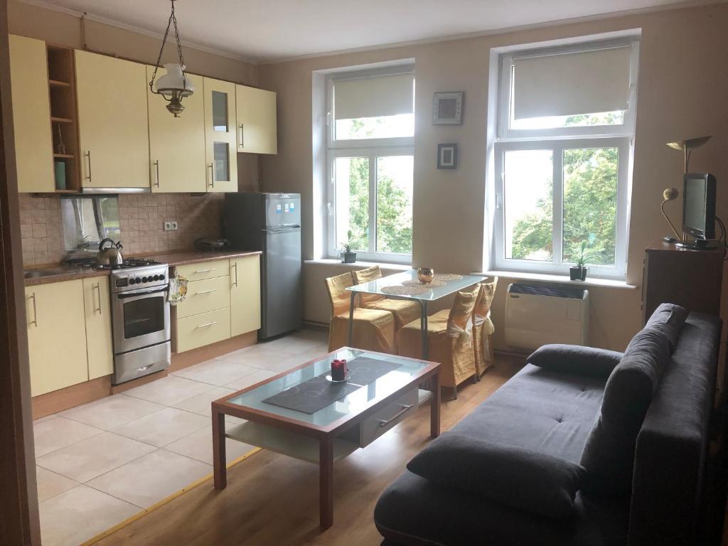 Kuchnia lub aneks kuchenny w obiekcie Apartament - Gdańsk-Oliwa