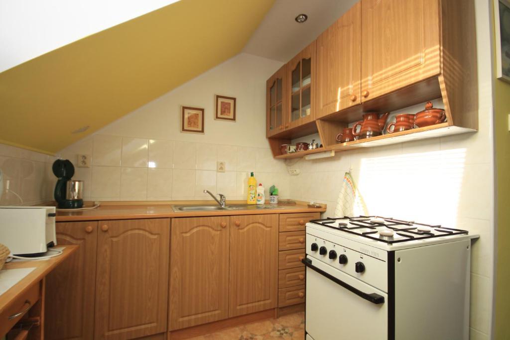 Kuchyňa alebo kuchynka v ubytovaní Apartmán pod Černou horou
