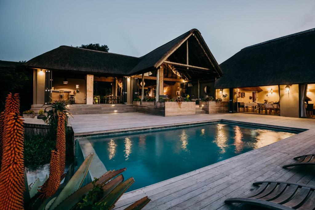 The swimming pool at or near Bukela Game Lodge - Amakhala Game Reserve