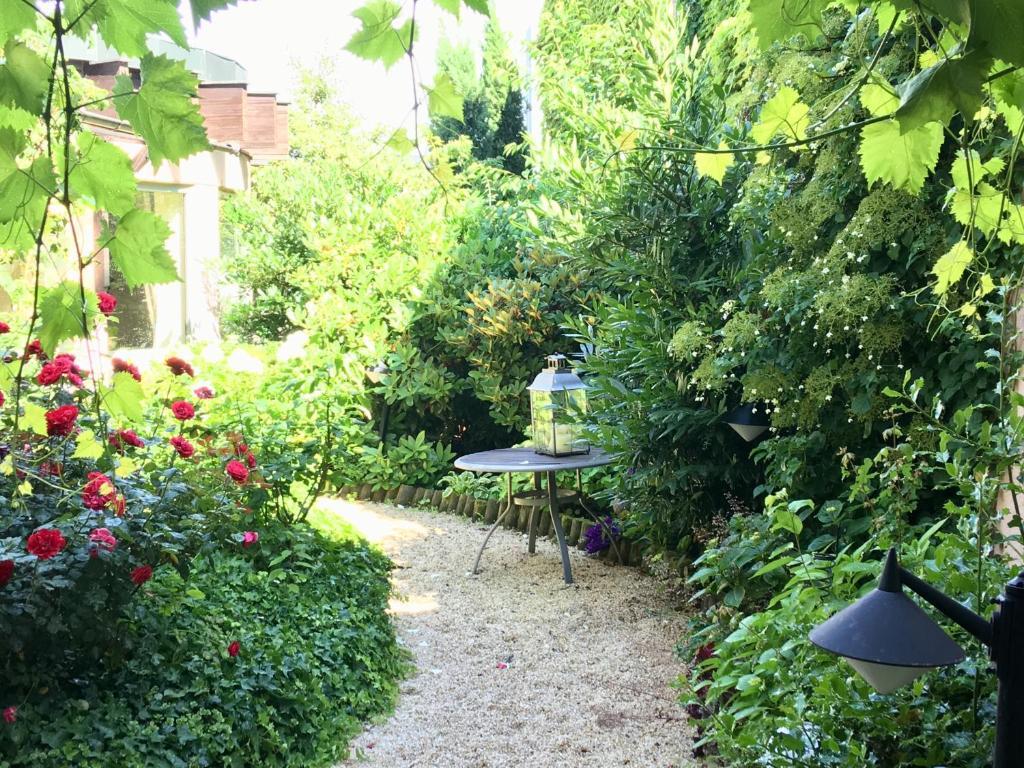 A garden outside HEINRICHs winery bed & breakfast