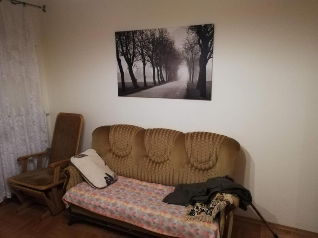 A seating area at Zabki HEADQUATER