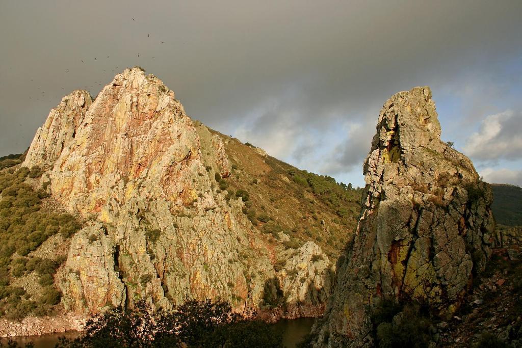 Bungalows Camping Parque Nacional de Monfrague Malpartida de Plasencia, Spain