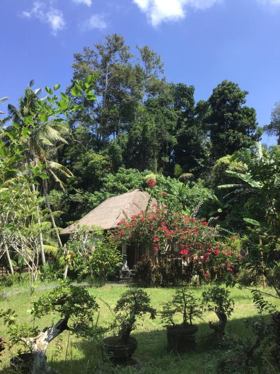 Yeh Pulu Guesthouse