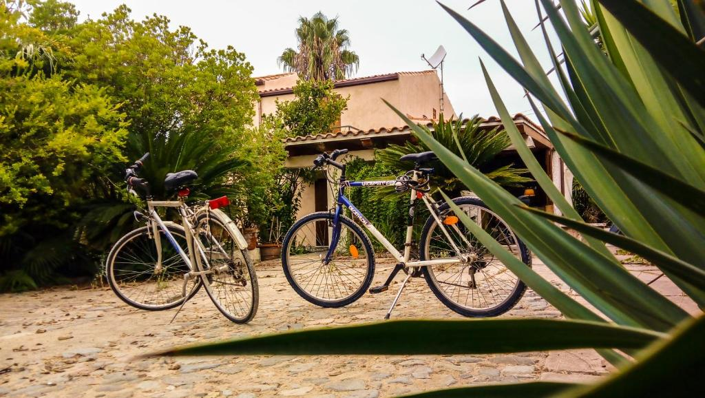 Montar en bicicleta en Alghero in bicicletta o alrededores