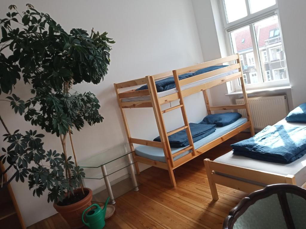 A bunk bed or bunk beds in a room at CJK Hostels Wojska