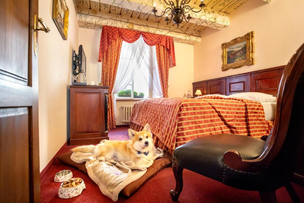 Pet or pets staying with guests at Hotel U Zlateho Stromu