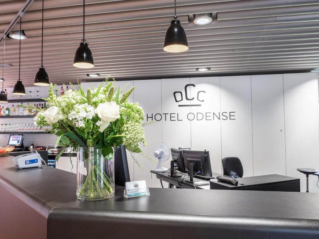 Кухня или мини-кухня в Hotel Odense