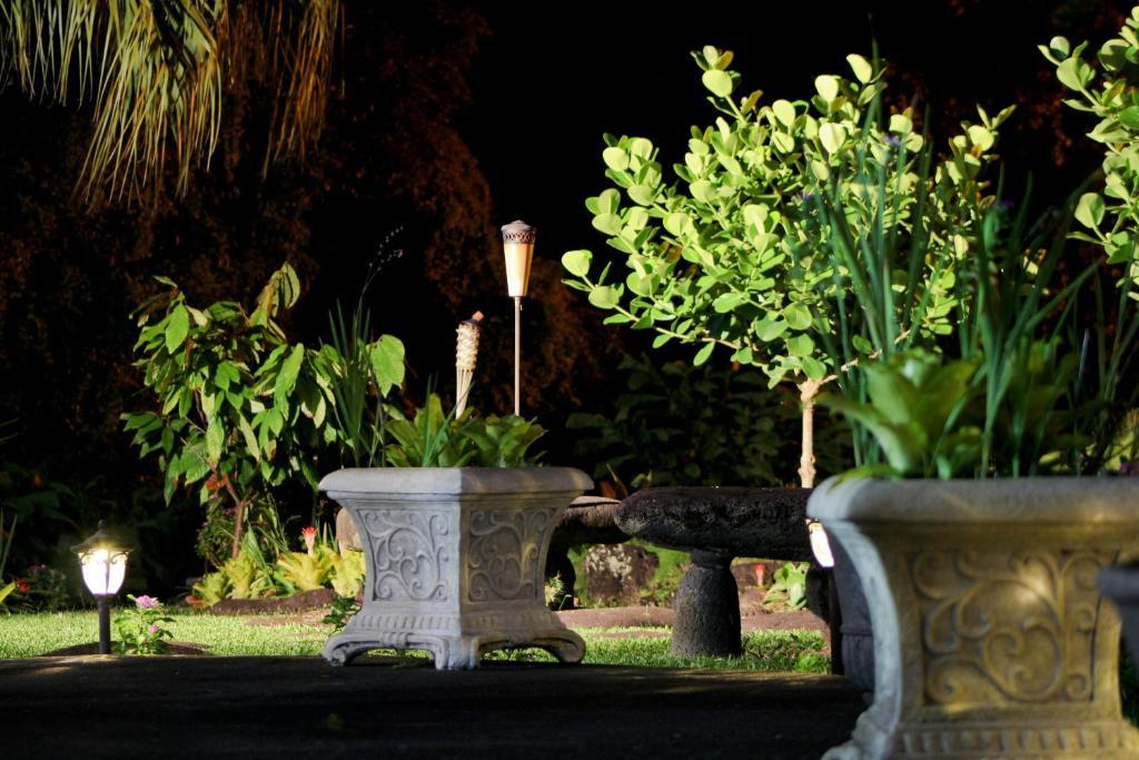 A garden outside Hilltop Legacy Vacation Rental