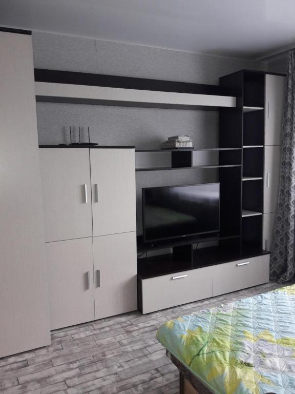 Телевизор и/или развлекательный центр в 1-комнатная квартира на Нижней Дуброве