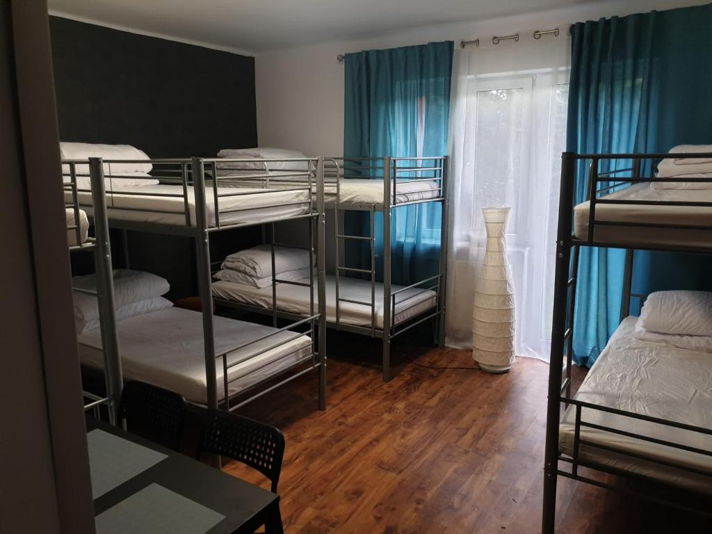 A bunk bed or bunk beds in a room at Zielony Zakątek
