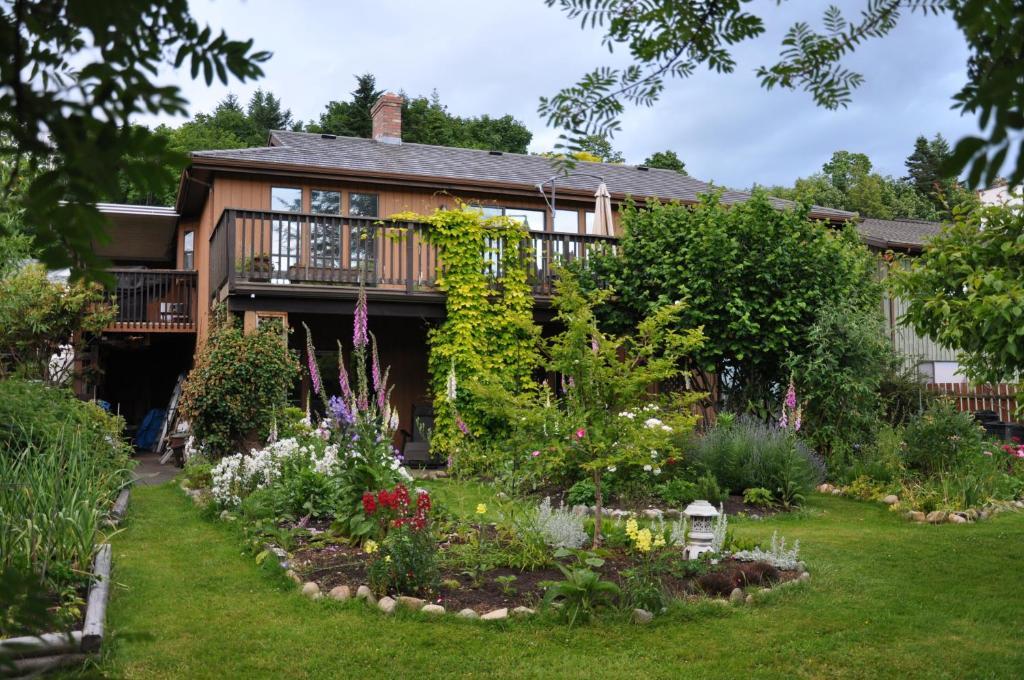 A garden outside Stafford House Bed & Breakfast