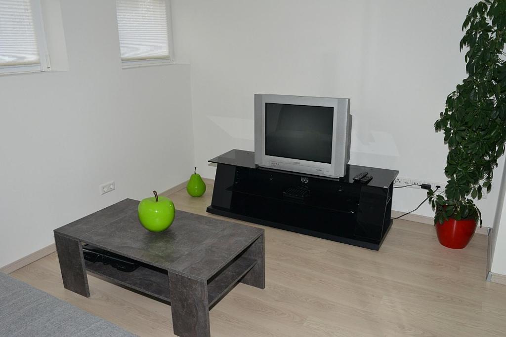 TV/Unterhaltungsangebot in der Unterkunft Apartment in Reutlingen / Sickenhausen