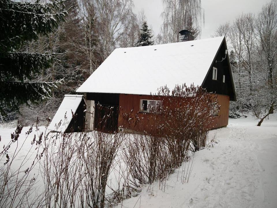 Chalet chata u lesa during the winter