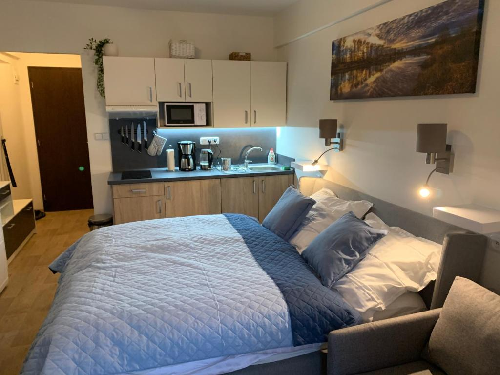 Apartments Rokytnice One Room Apartment Rokytnice Nad Jizerou Czech Republic Booking Com