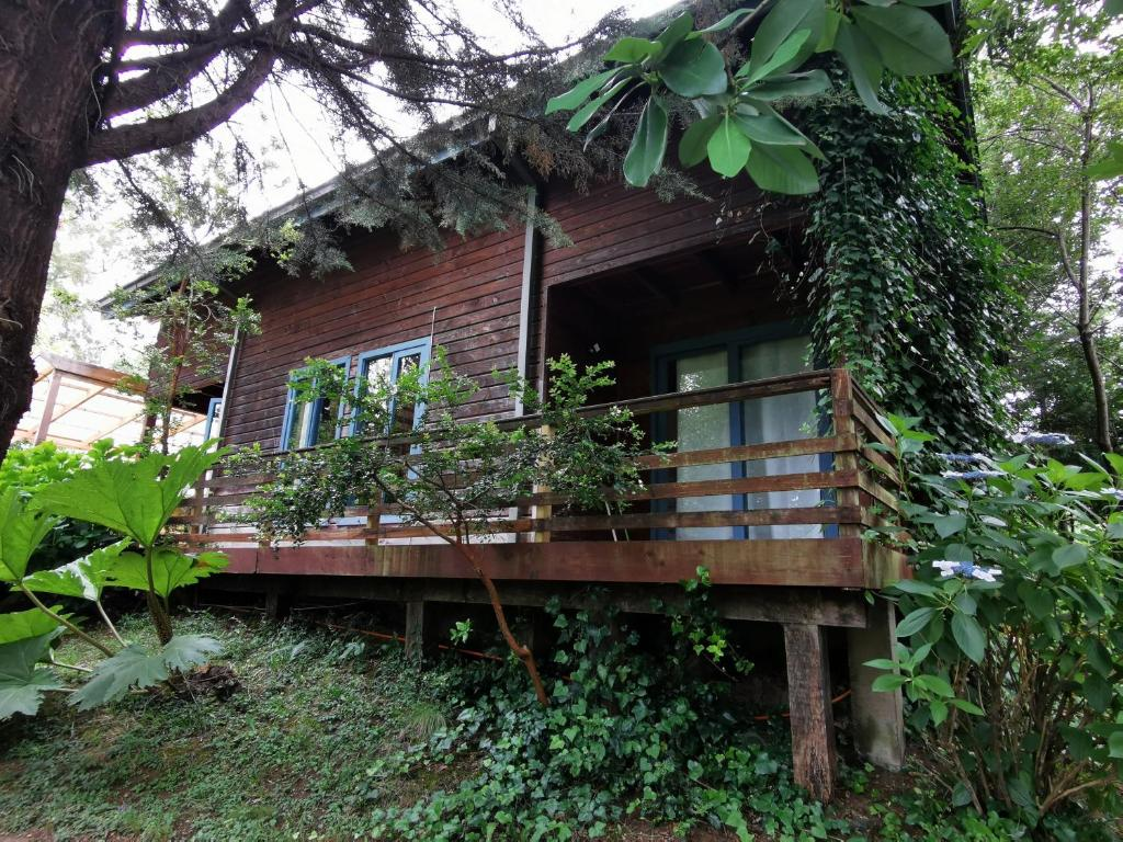 Pudomo cabin in Coñaripe - with exclusive hot tub