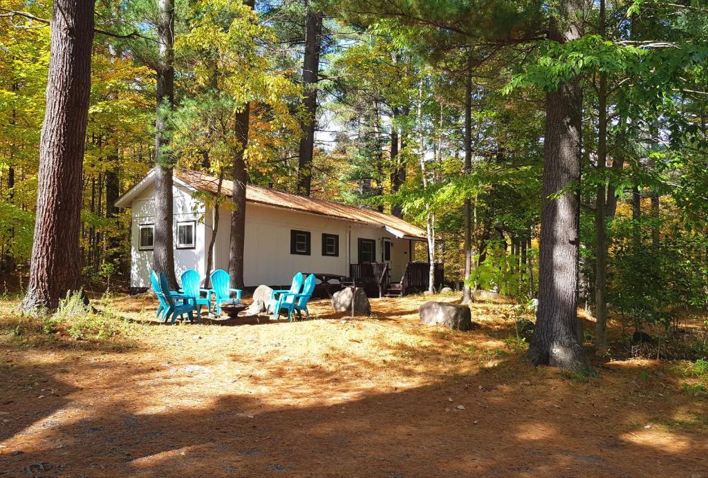 The Aspen Cabin