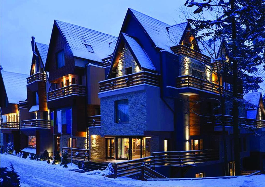Ioana Hotel iarna