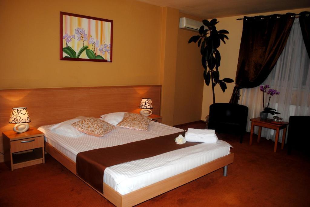 Hotel Vandia Timisoara, Romania