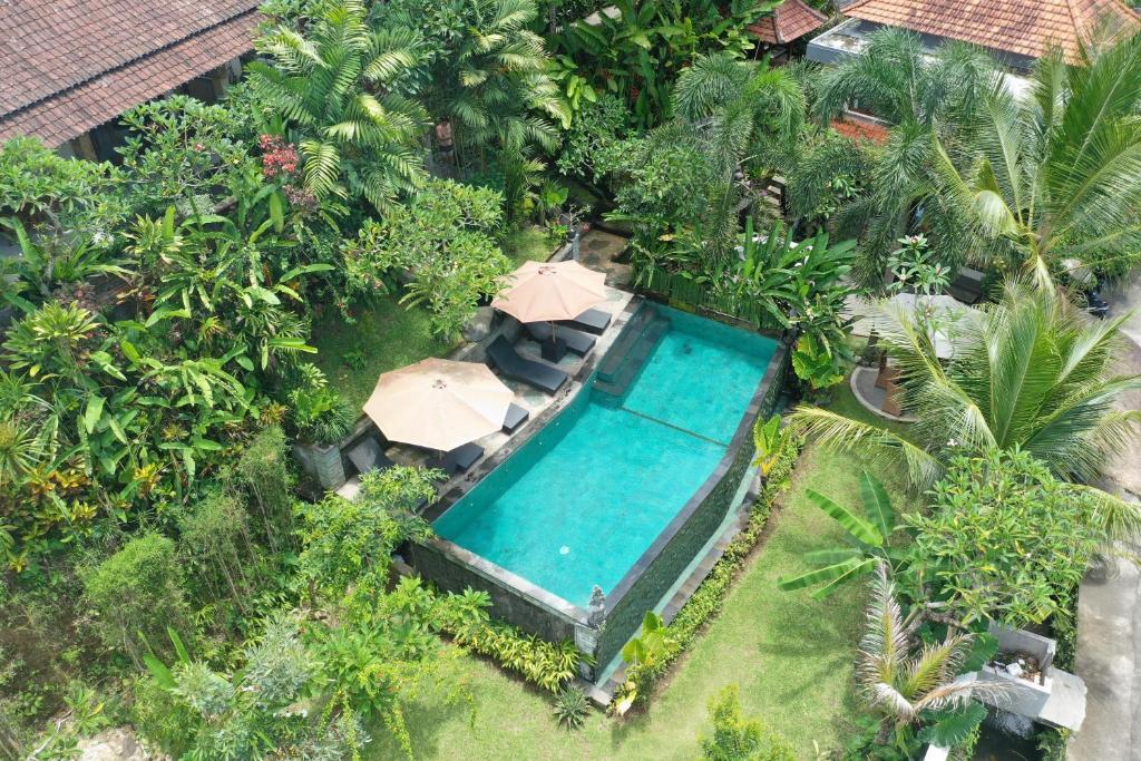 Uitzicht op het zwembad bij Tini Villa of in de buurt