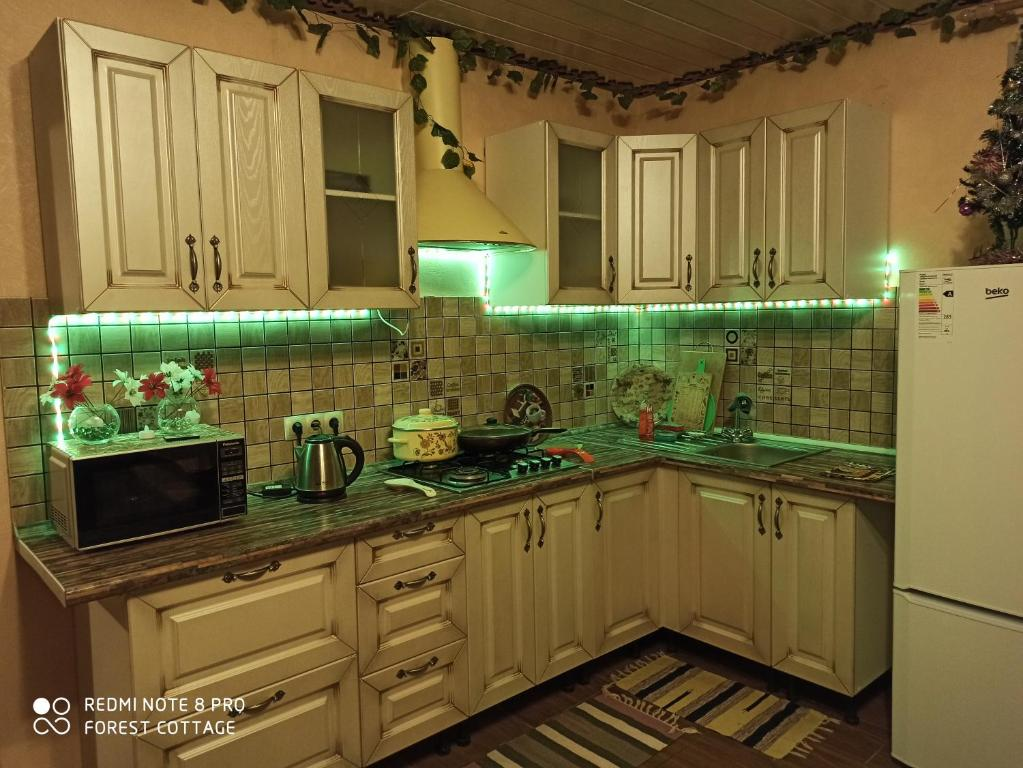 A kitchen or kitchenette at Cottage near the forest and lake