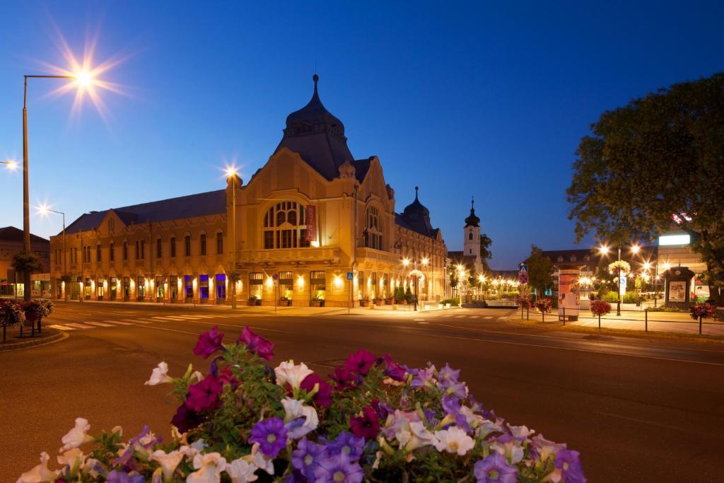 Hotel Queen Elizabeth Superior Godollo, Hungary