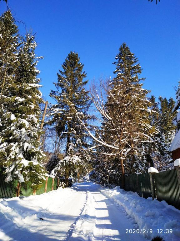 """Відпочинковий комплекс """"Зелем'янка"""" зимой"""