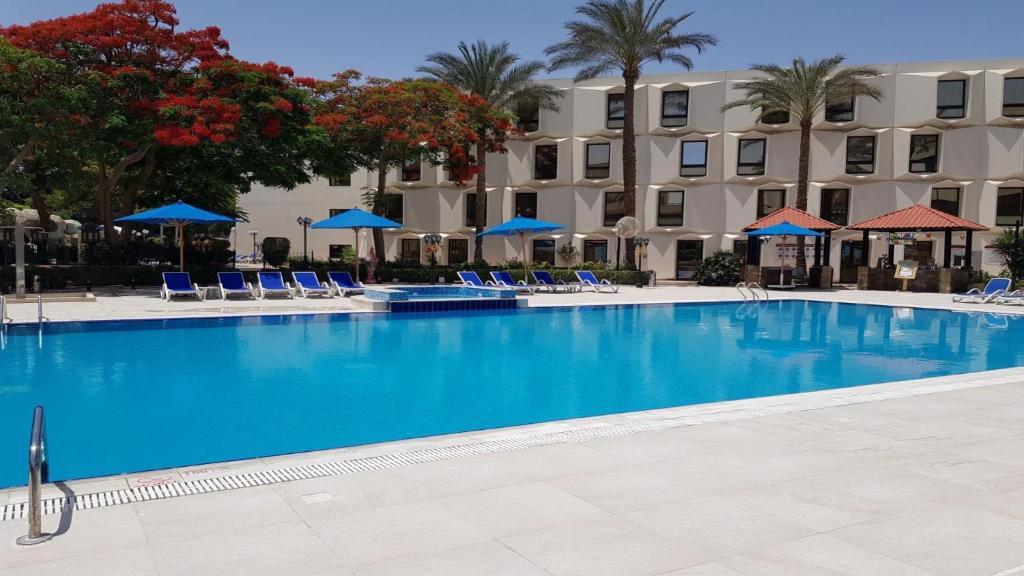المسبح في فندق و كازينو لو باساج القاهرة أو بالجوار
