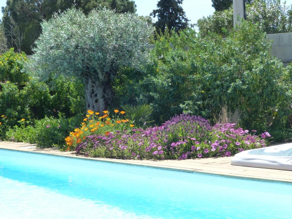 The swimming pool at or near Gîte Les Lauriers Roses