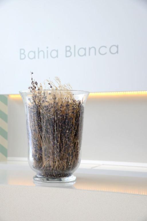 Bahia Blanca - Laterooms