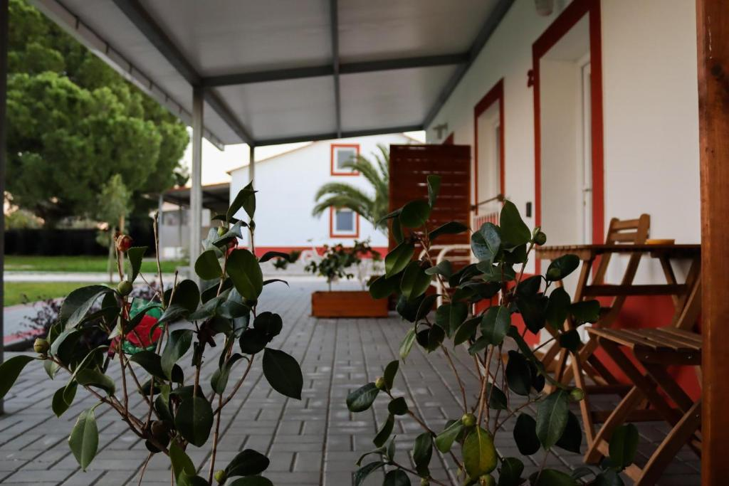 A restaurant or other place to eat at Casa das Pipas #2